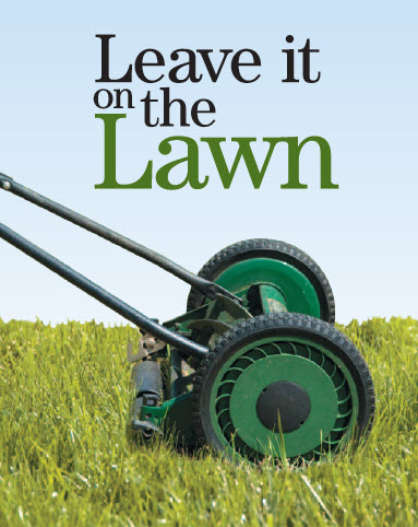 push mower mowing grass